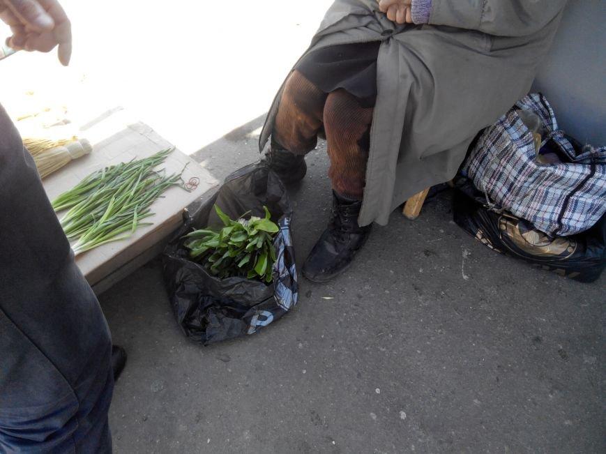 В Сумах милиция с экологами отлавливала на Центральном рынке продавцов черемши (ФОТО) (фото) - фото 1