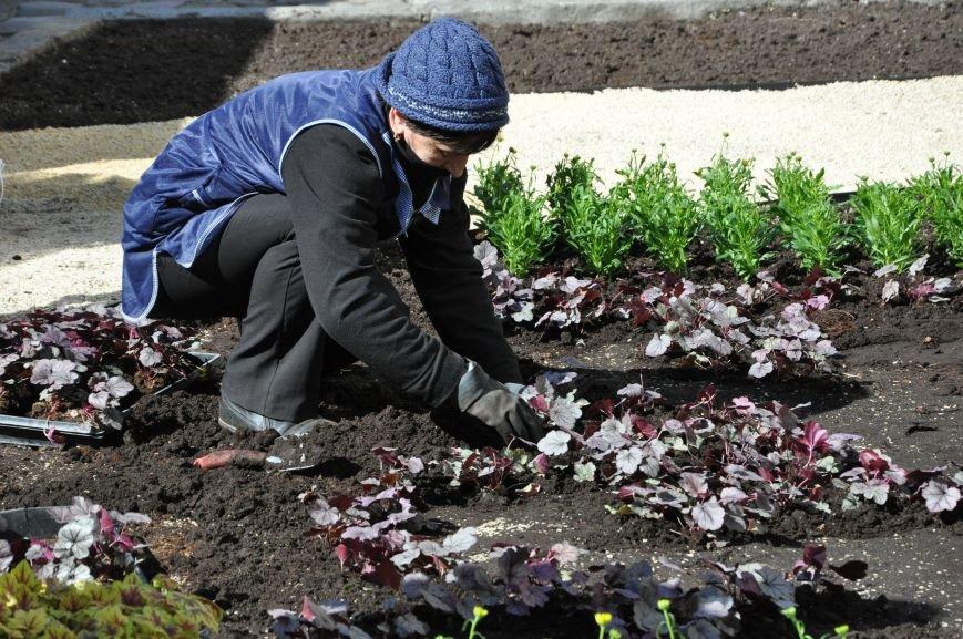 Львів розквітає: до Великодня у центрі міста висадили нових 3600 квітів (ФОТО), фото-1