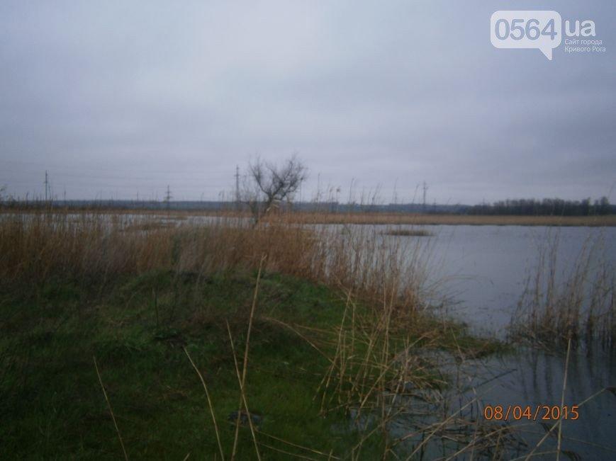 В Кривом Роге: «минера» школ посадили на 3 года, «Горняк-Ветеран» сыграл с бойцами АТО, у криворожан затопило подвалы и огороды (фото) - фото 3