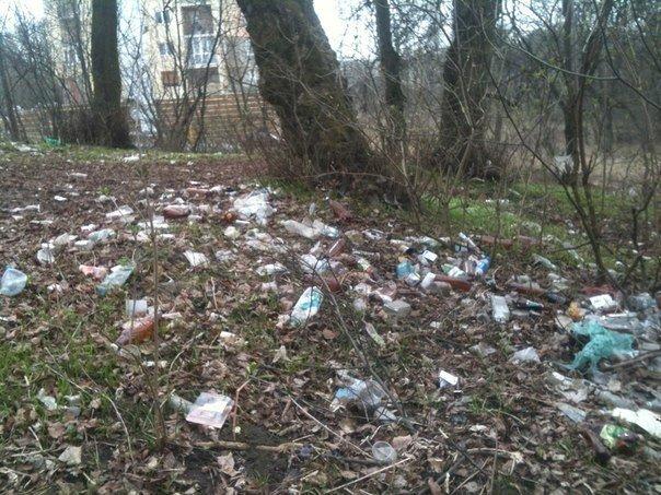 Тернополяни самотужки прибирали «Аляску» від сміття (фото) (фото) - фото 1