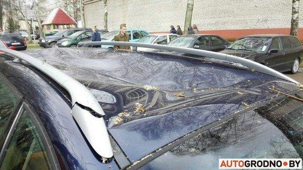 В Гродно из-за сильных ветров две ветки по 300 кг упали на автомобиль (фото) - фото 4