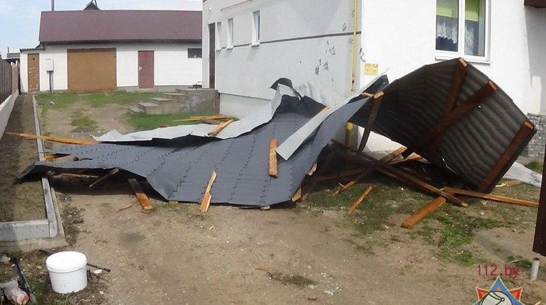 Фотофакт: в Гродно сильный ветер обрушил несколько деревьев и тумбу (фото) - фото 5