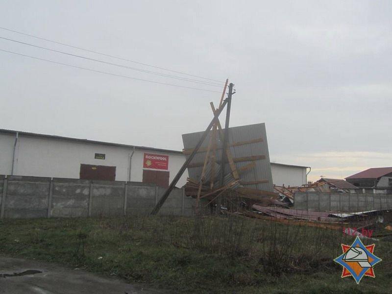 Фотофакт: в Гродно сильный ветер обрушил несколько деревьев и тумбу (фото) - фото 7