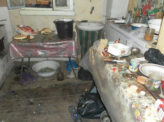 У Полтаві «дитячі» міліціонери змушені були забрати немовля до лікарні у матері-п'янички (фото) - фото 1