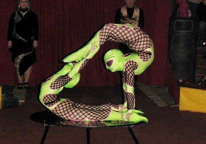 Цирк «Виват - Але» впервые в Кировограде (фото) - фото 1