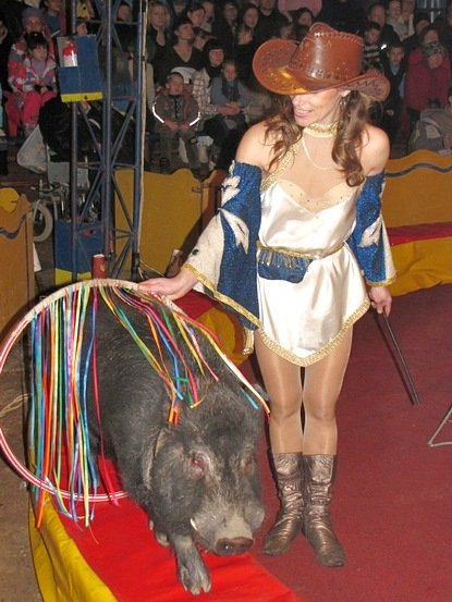 Цирк «Виват - Але» впервые в Кировограде (фото) - фото 3