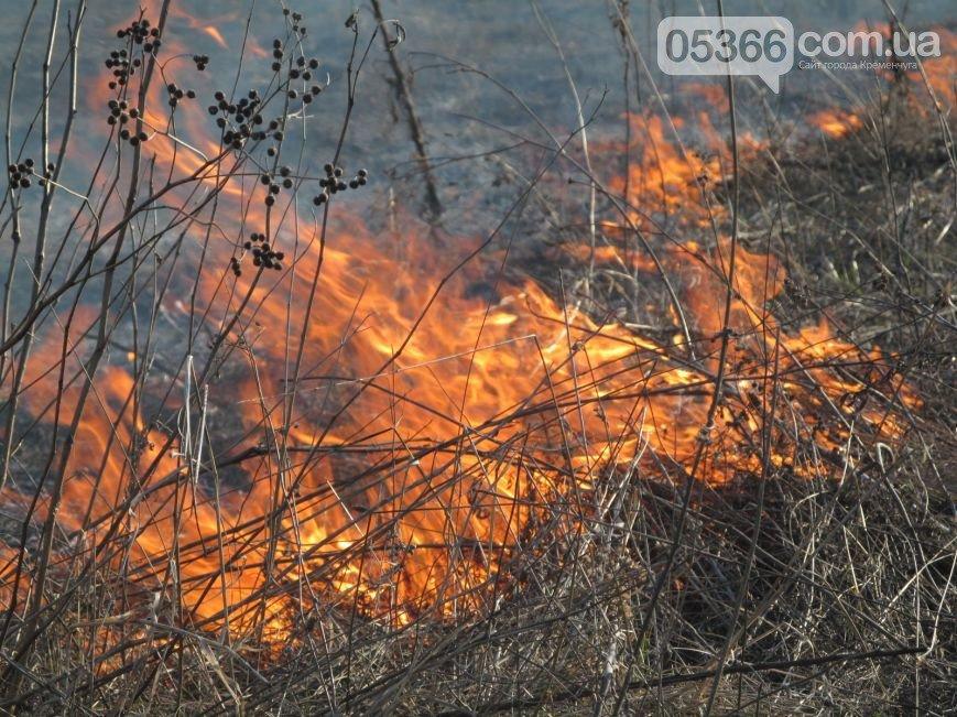Граждане, не поджигайте сухую траву и мусор! Предупреждение пожарных (фото) - фото 1