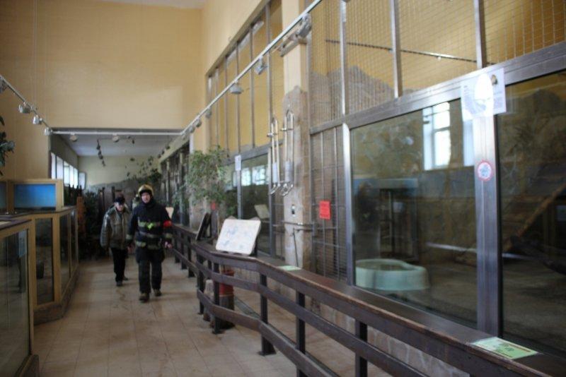 В Ленинградском зоопарке загорелся вольер с хищниками (фото) - фото 1