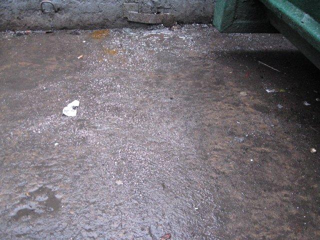 В одном из дворов Петербурга обнаружили 10 килограммов мусора с ртутью (фото) - фото 1