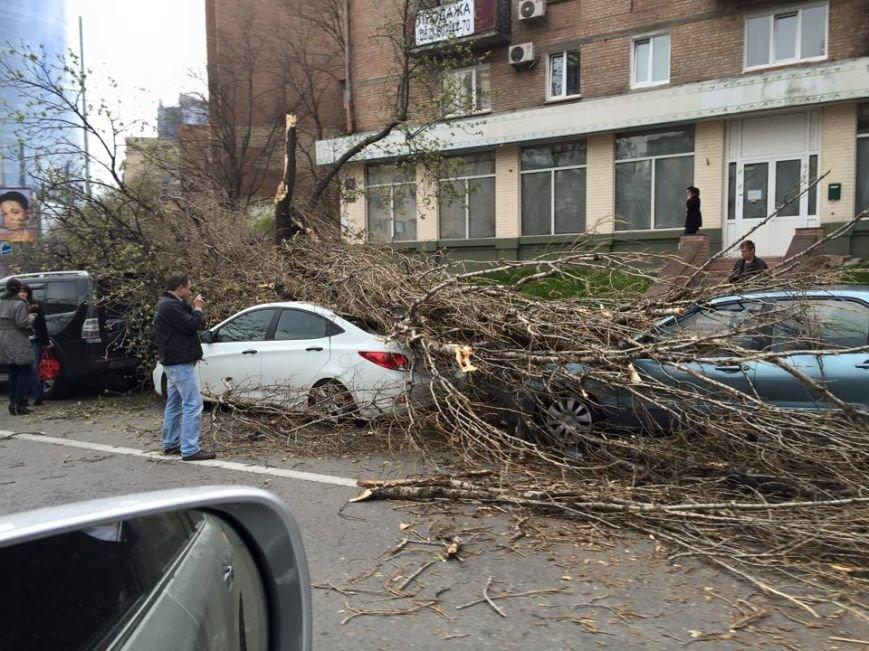 В Киеве ураганный ветер валил деревья и рекламные щиты (ФОТОФАКТ) (фото) - фото 1