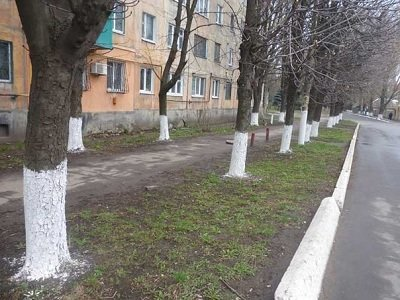 «Чистый четверг» в Макеевке: жители приводят город в порядок после зимы (фото) - фото 1