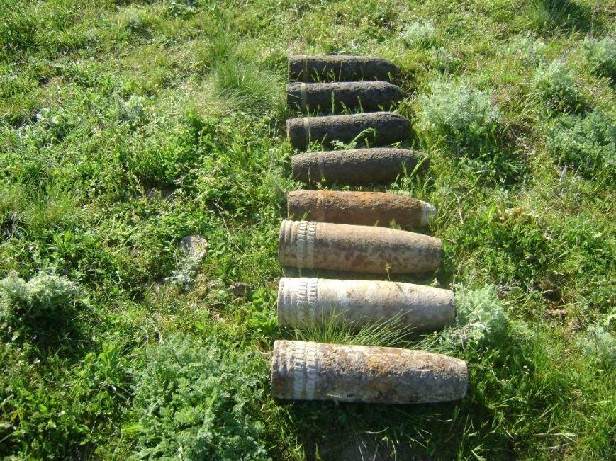 Херсонские пиротехники обезвредили авиабомбу весом в 100 кг (фото) (фото) - фото 2