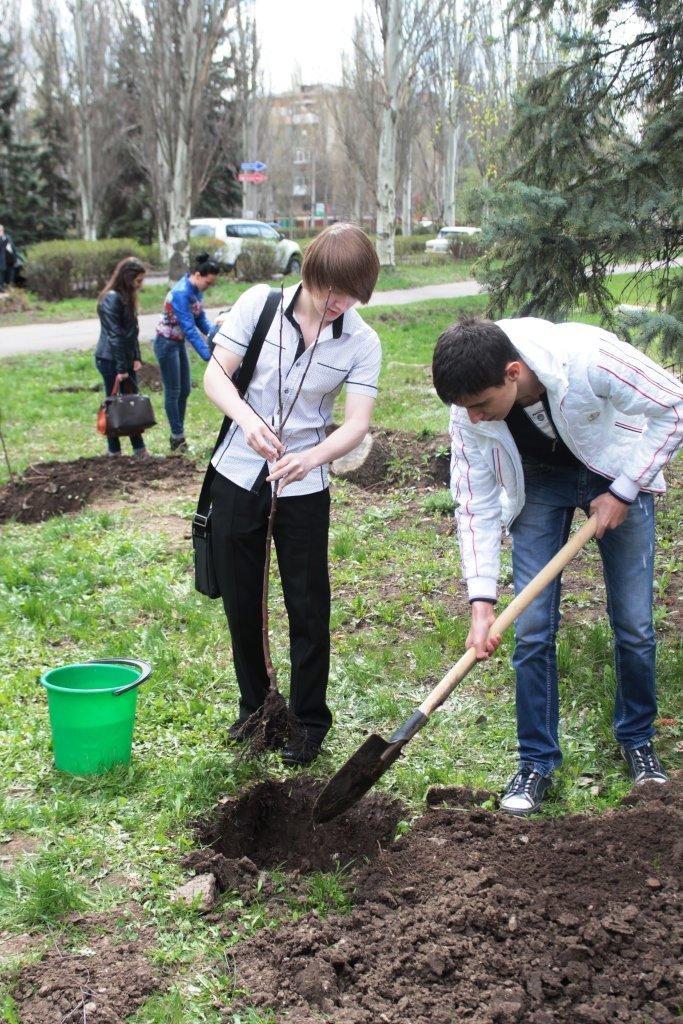 ДИТМ в Краматорске высадил яблоневый сад, фото-2