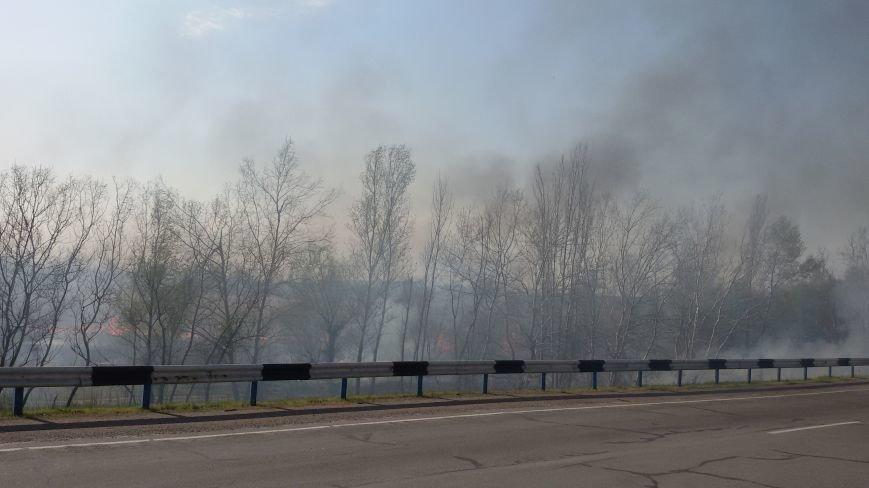 Огонь вплотную приблизился к Херсонскому мосту и дачам левобережья, фото-3