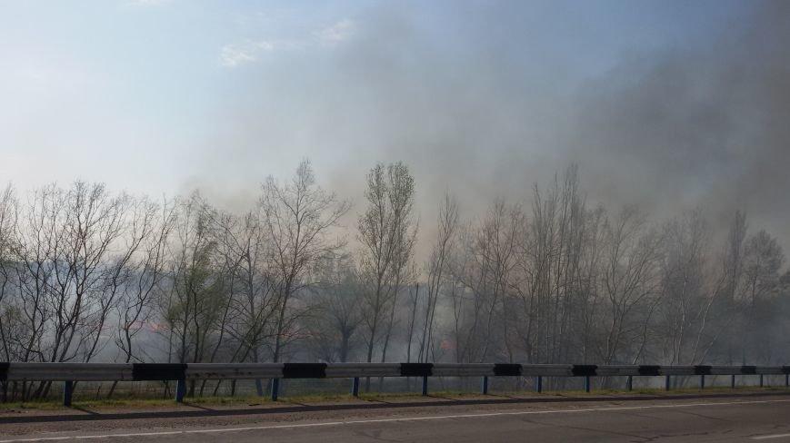 Огонь вплотную приблизился к Херсонскому мосту и дачам левобережья, фото-4