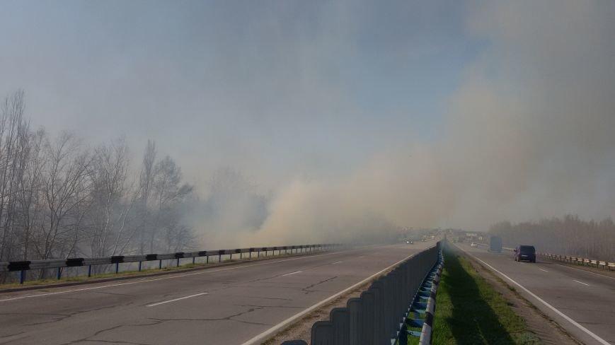 Огонь вплотную приблизился к Херсонскому мосту и дачам левобережья, фото-2
