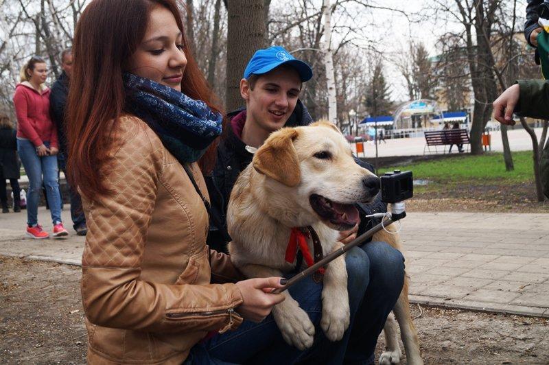 В Белгороде на выставке-раздаче 24 из 27 бездомных собак нашли себе дом (фото) - фото 6