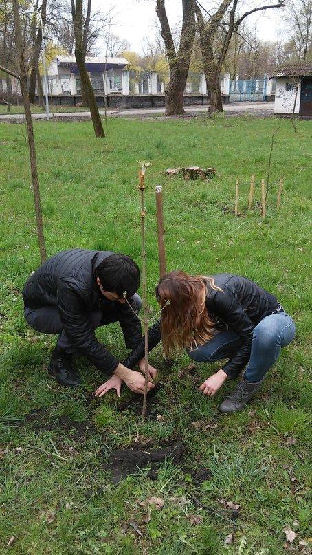 В Кривом Роге на «Аллее Героев» посадили первые деревья в память о погибших бойцах (ФОТО) (фото) - фото 1