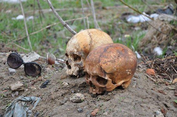 В Сумах на воротах обнаружили человеческие черепа в солнцезащитных очках (ФОТО+ВИДЕО) (фото) - фото 1