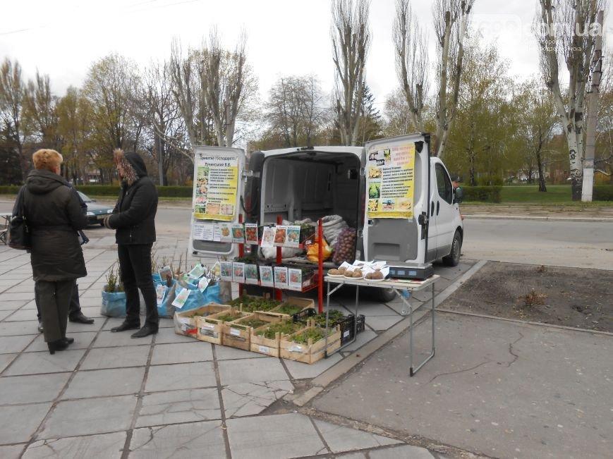 В Днепродзержинске проходит зеленая выставка-ярмарка (фото) - фото 1