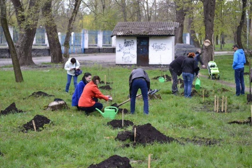 Криворожане увековечили память о погибших бойцах, посадив деревья на «Аллее Героев» (ФОТО, ВИДЕО) (фото) - фото 1