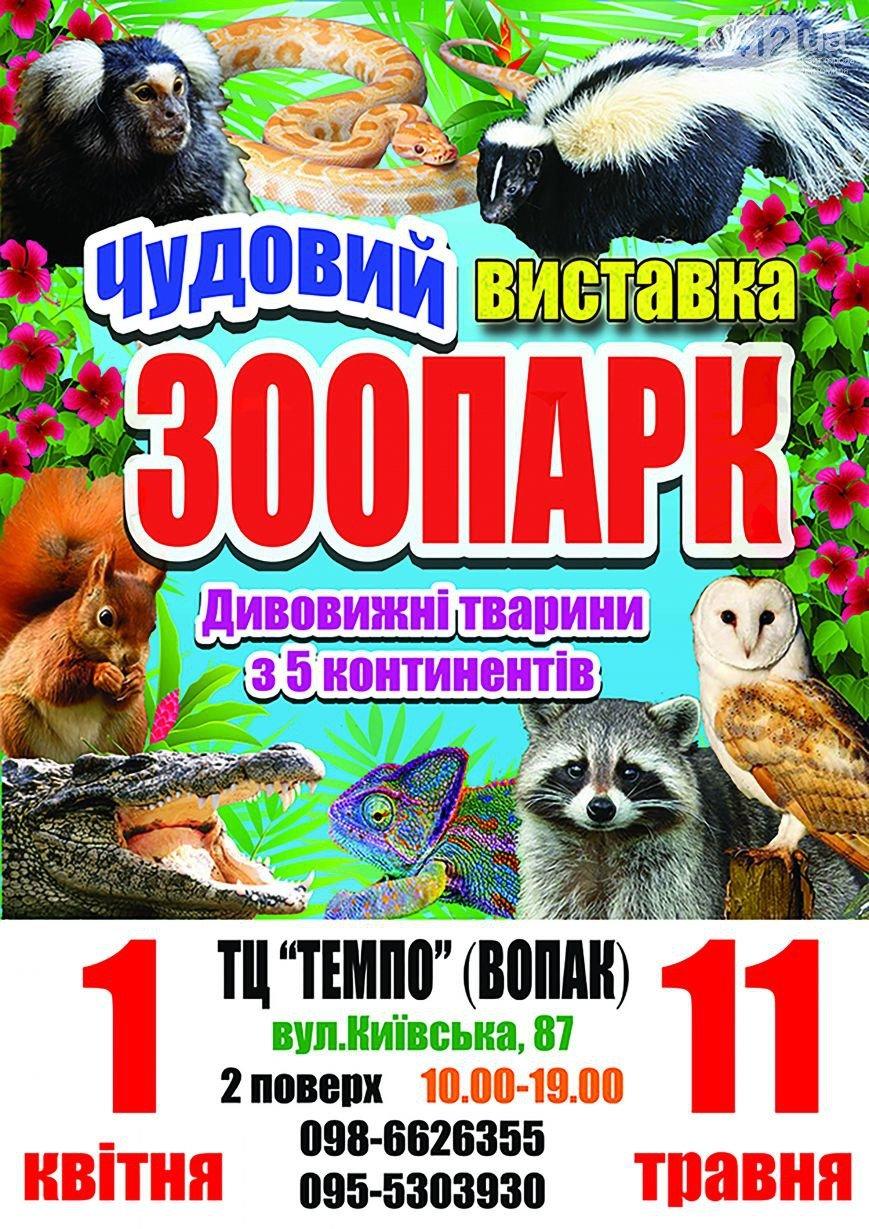 Сайт 0412 проводить вікторину для житомирян: отримайте квитки на виставку «Чудовий Зоопарк» (фото) - фото 1