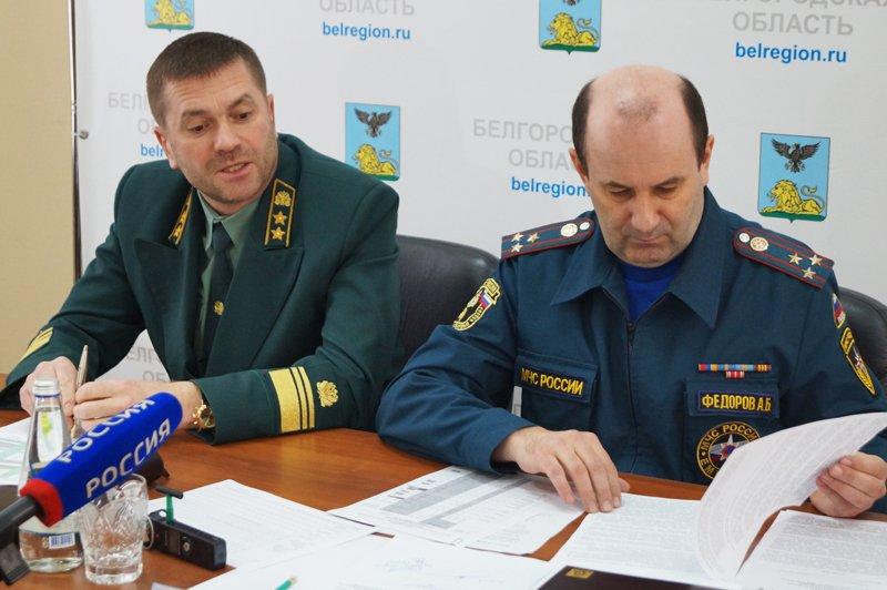 Белгородцев призвали за вознаграждение сообщать о поджигателях сухой травы (фото) - фото 1