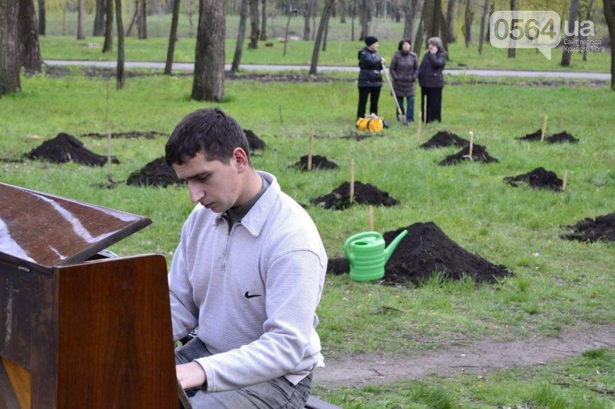 В Кривом Роге: на «Аллее Героев» посадили деревья, поймали автоугонщика и засняли машину с флагом страны-агрессора (фото) - фото 1