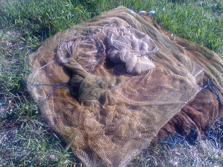 В районе Железного Порта у браконьеров изъяли 35 000 креветок (фото) - фото 1
