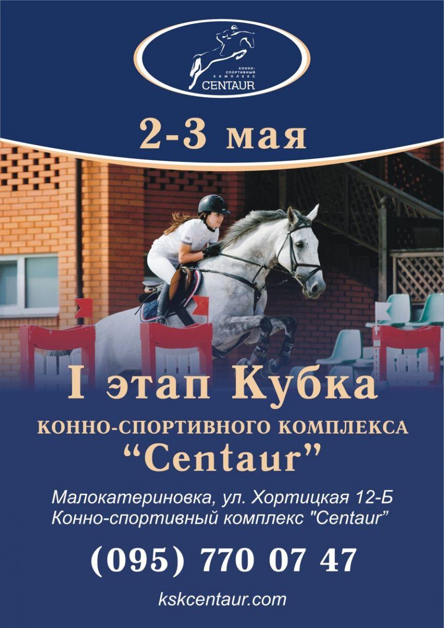 В Малокатериновке пройдут соревнования по конному спорту Кубок КСК «Centaur» (фото) - фото 3