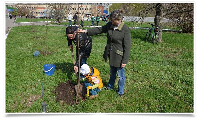 Горводоканал Славянска совместно с объединением «Самопоміч» высадил 20 деревьев (фото) - фото 7