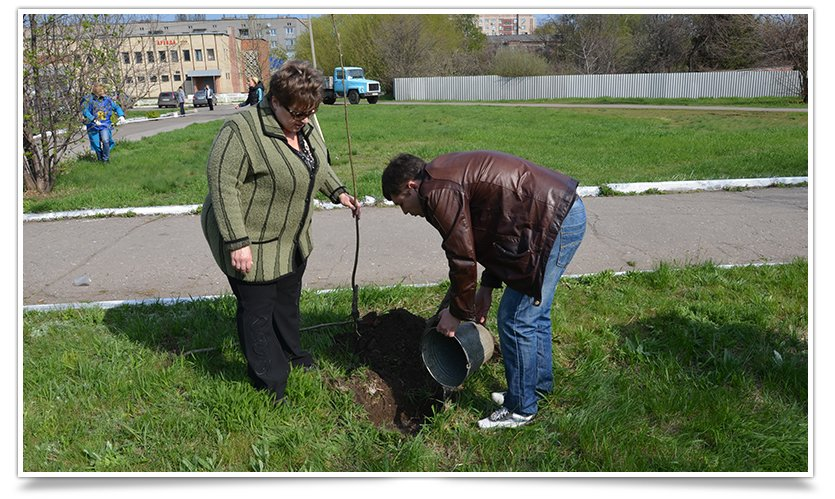 Горводоканал Славянска совместно с объединением «Самопоміч» высадил 20 деревьев (фото) - фото 4