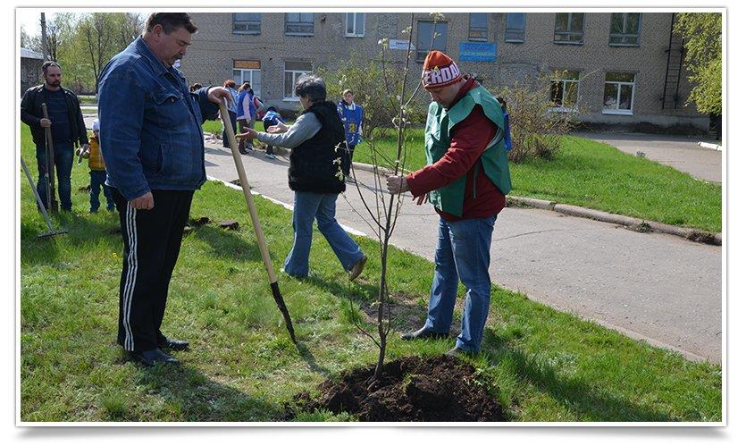 Горводоканал Славянска совместно с объединением «Самопоміч» высадил 20 деревьев (фото) - фото 2