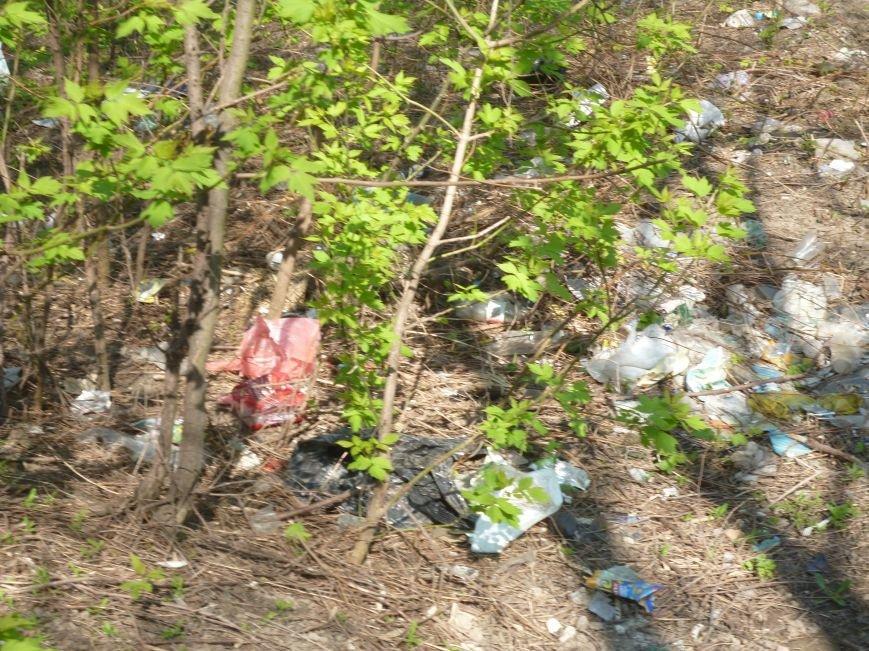 Криворожане с семьями вышли на уборку города (ФОТОРЕПОРТАЖ) (фото) - фото 1