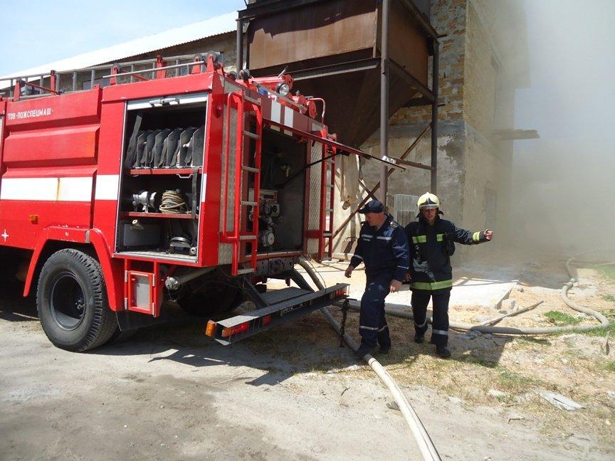 Вчера в Херсоне сгорел склад лесоматериалов (фото) (фото) - фото 1
