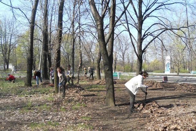 В Доброполье состоялась акция по уборке городского парка (фото) - фото 2