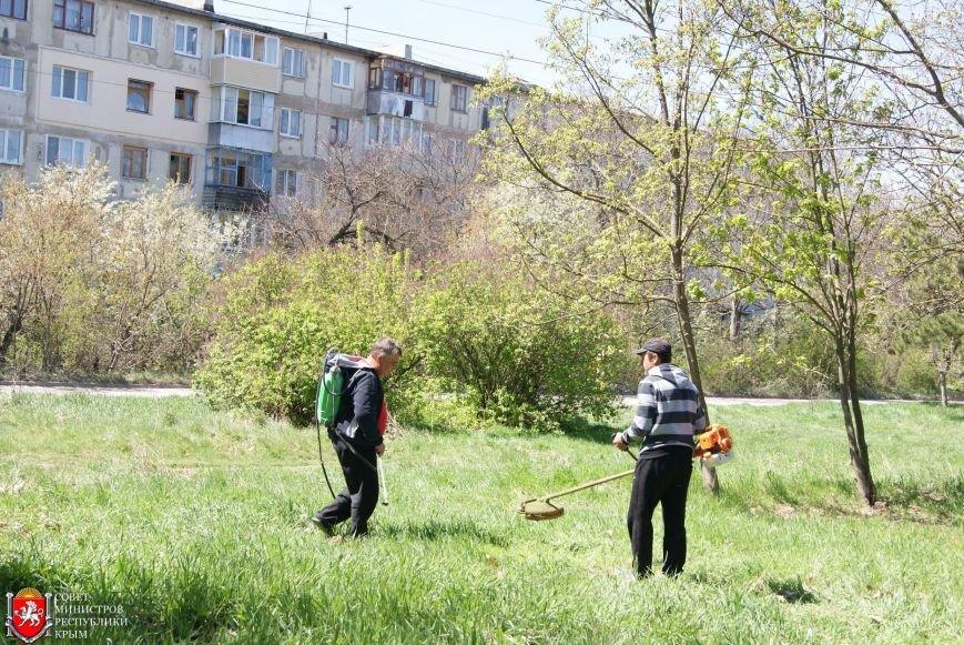 Аксенов высадил деревья в симферопольском парке и планирует подобные акции проводить каждые выходные (ФОТО) (фото) - фото 6
