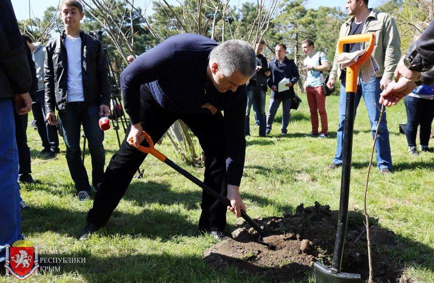 Аксенов высадил деревья в симферопольском парке и планирует подобные акции проводить каждые выходные (ФОТО) (фото) - фото 2