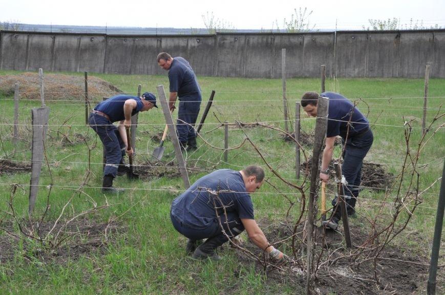 Кіровоградська область: рятувальники підтримали та приєдналися до проведення Всеукраїнського Дня довкілля, фото-3