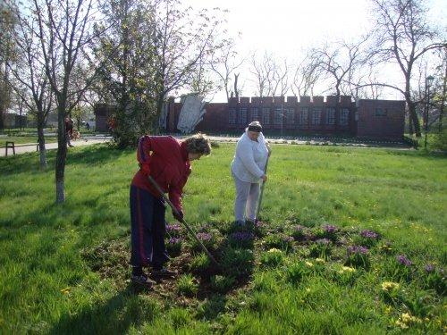 В Павлоградском районе очистили 80 га парков и скверов, а в Терновке высадили 50 деревьев на Аллее Мира (фото) - фото 1