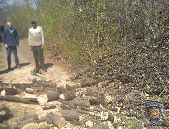 Работники линейного отдела на станции Славянск остановили незаконную порубку леса (фото) - фото 1