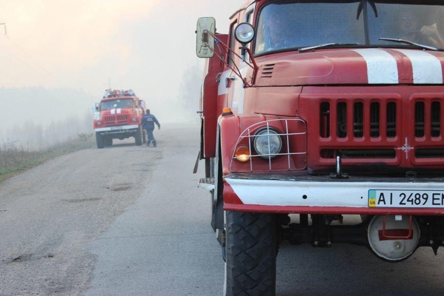 Фронт пожара возле ЧАЭС остановлен, радиационный фон в норме, - ГСЧС (ФОТО) (фото) - фото 1