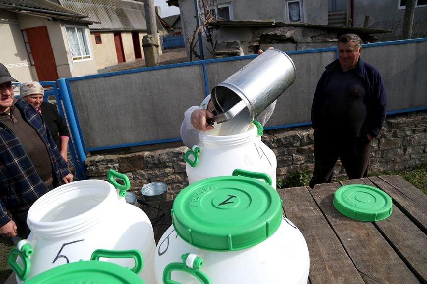 Підприємство Петра Гадза приймає молоко у населення за рекордними цінами (ФОТО) (фото) - фото 1
