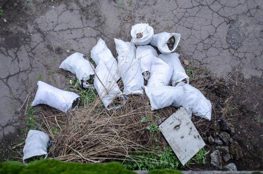 В Краматорске прошел воскресник единения, фото-5