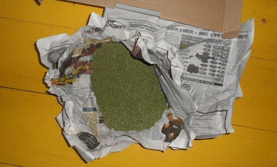 Вирощуванням коноплі займався на дачі (фото) - фото 3