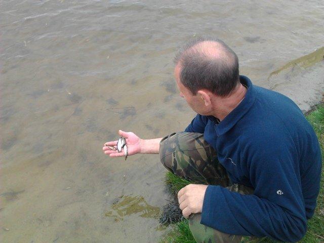 Кировоградцы запустили малек в речку Ингул (фото) - фото 1