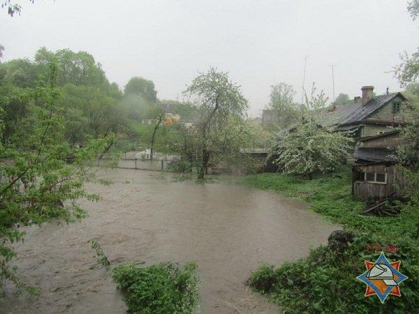 В Гродно сильный дождь за сутки подтопил 5 домов, 8 подворий и одно СТО (фото) - фото 1