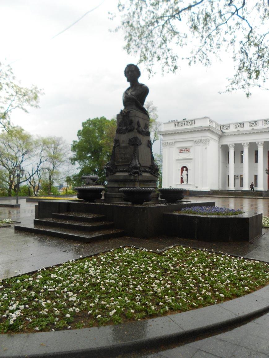В Одессе настоящая весна зацвела каштанами (ФОТО) (фото) - фото 2