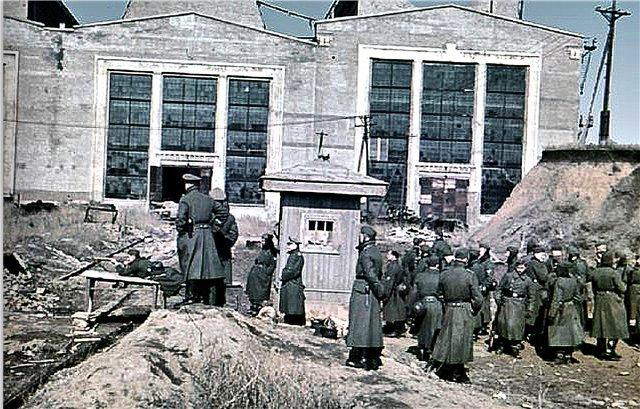 Промышленность Мариуполя в годы Второй мировой: заводы таки выплавляли сталь, появился частный бизнес, а землю отдали крестьянам (фото) - фото 4