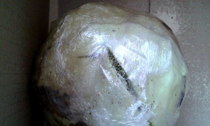 Сотрудники Кременчугской исправительной колонии нашли марихуану в капусте (ФОТО) (фото) - фото 1
